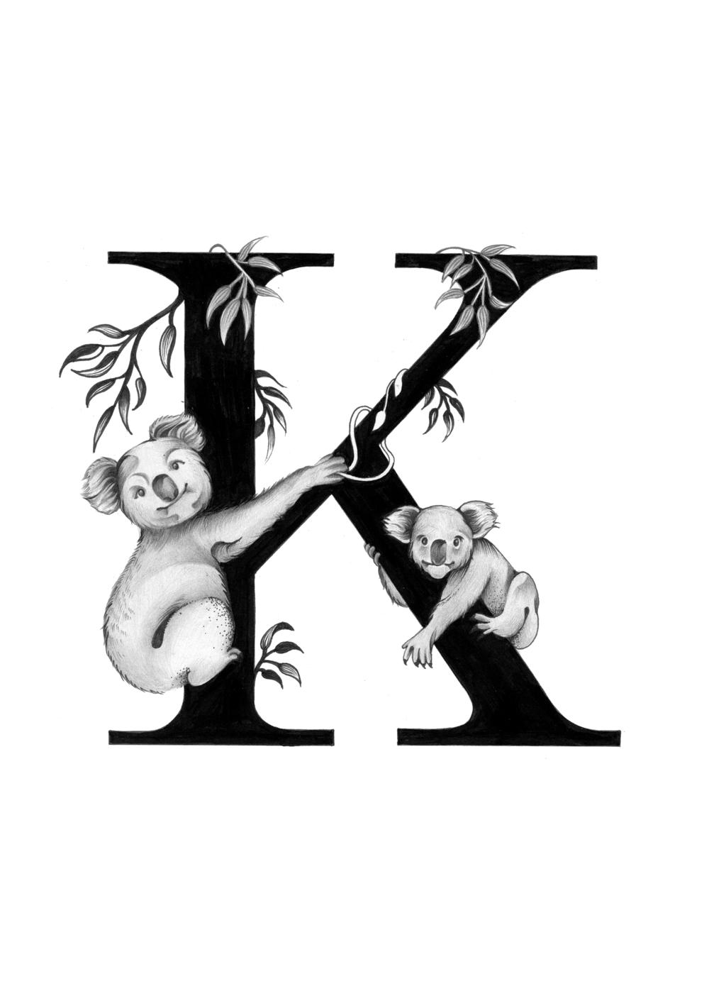 300 dpi-K Koala.jpg