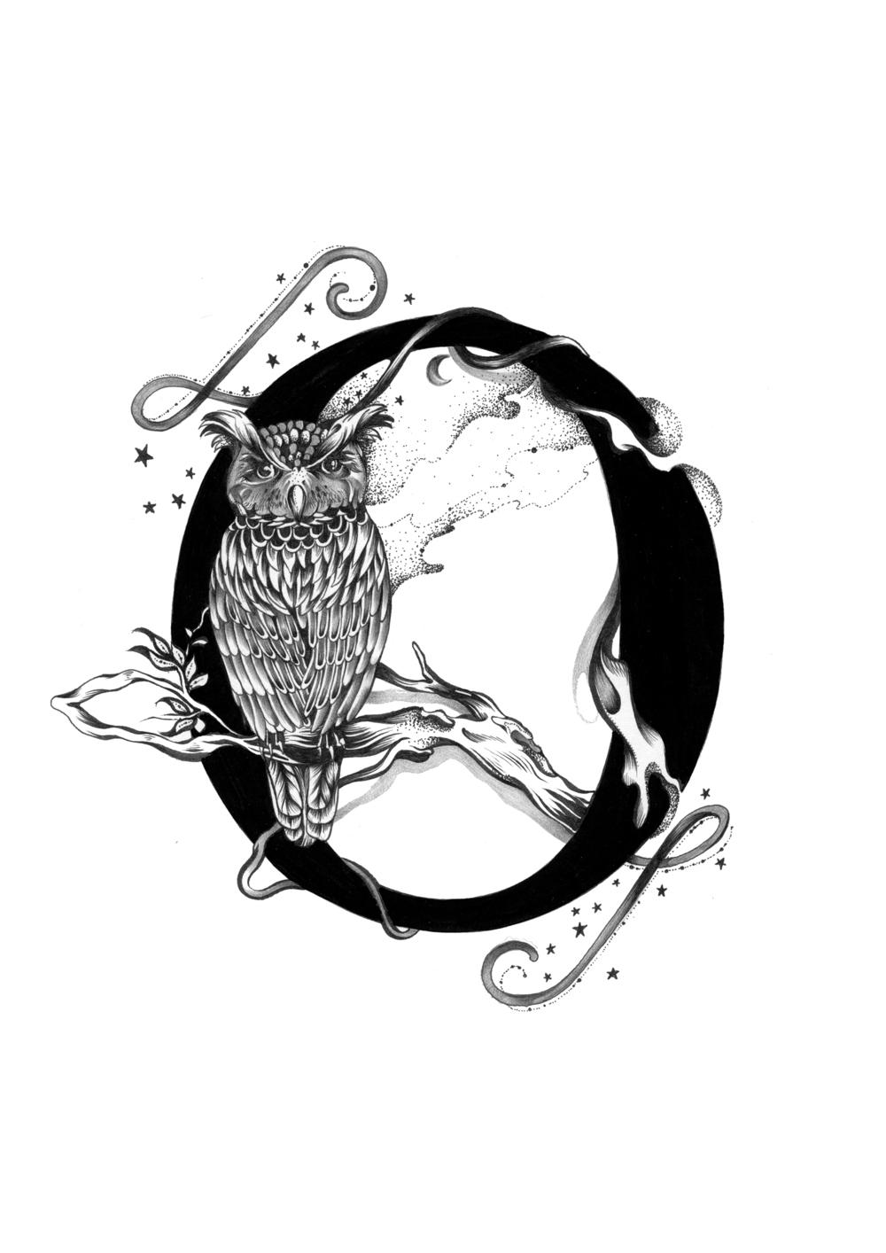 300 dpi-O Owl.jpg
