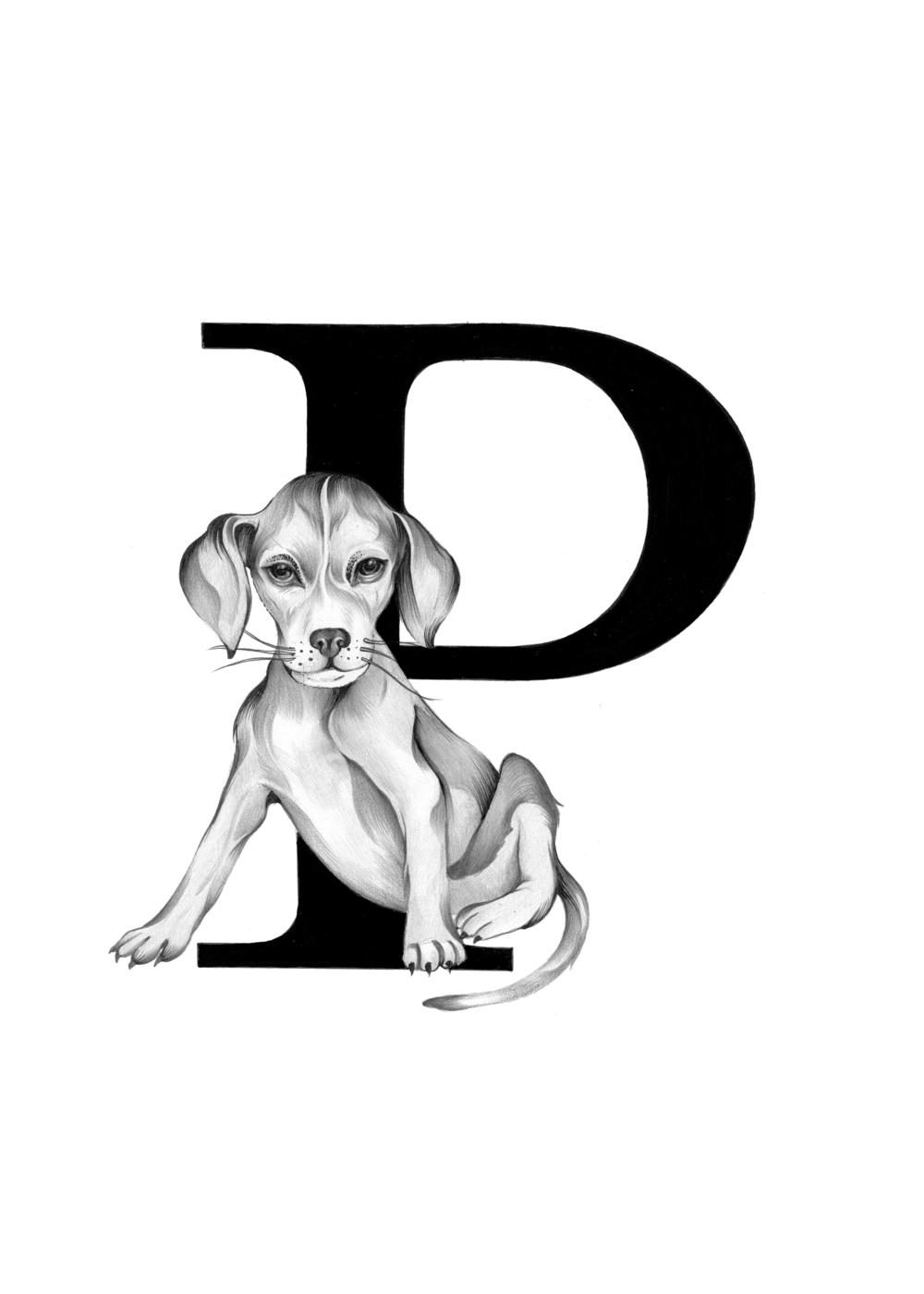 300 dpi-P Puppy.jpg