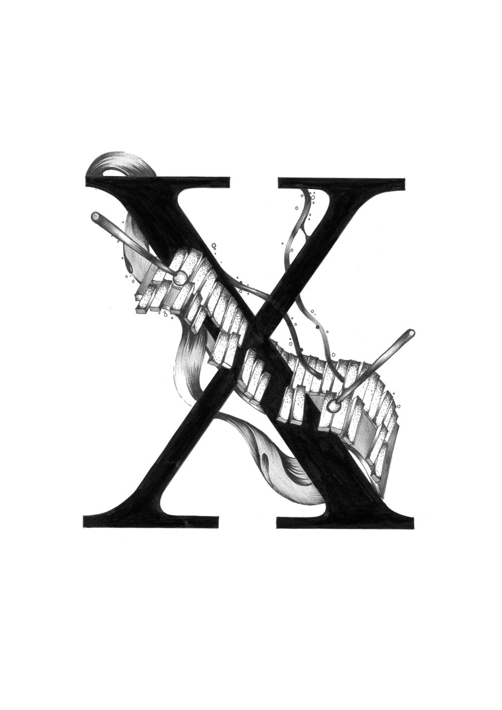 300 dpi-X Xylophone.jpg