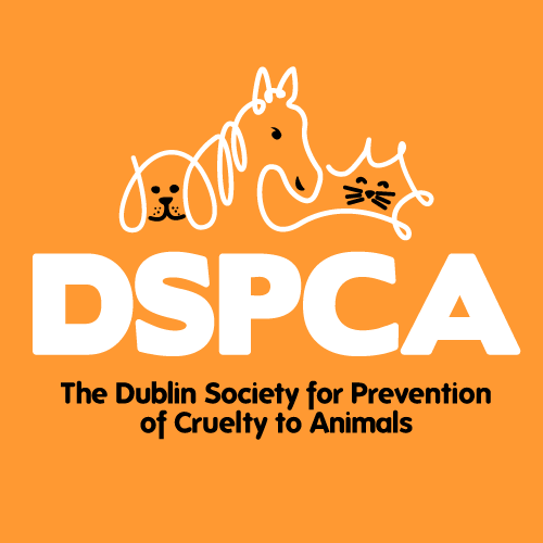 Brand identity design projects for the DSPCA