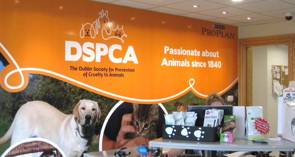 DSPCA Reception Area
