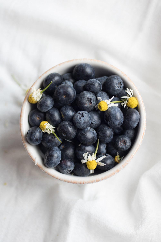 blueberries-21.jpg