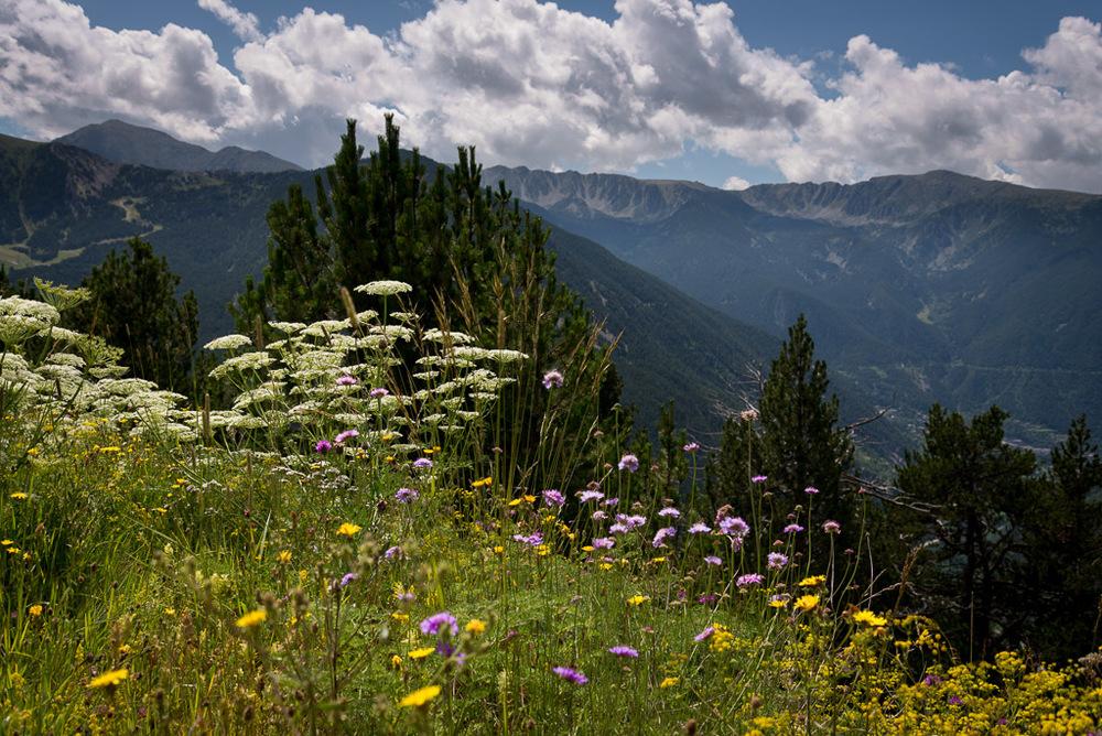 20140825-27-Pyrenees2014_Misc (27)_web.jpg