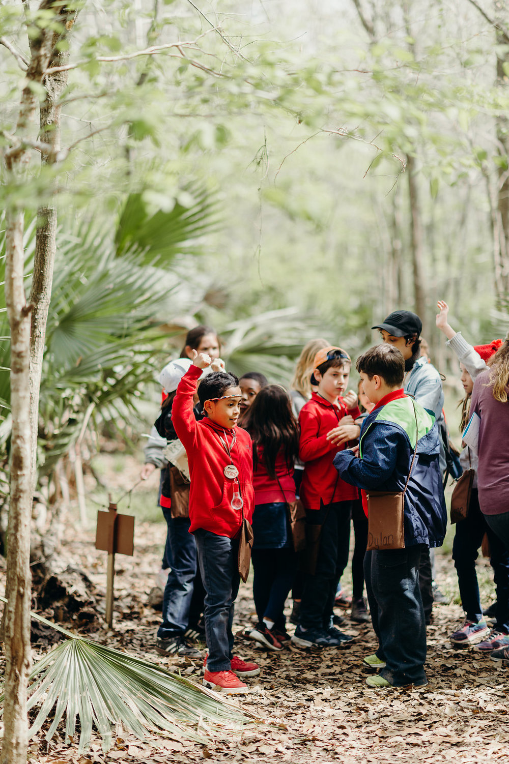What makes T.R.E.E. special? - While providing academic challenges, we instill a caring attitude and provide fundamental knowledge of how the systems on the Earth work. Our programs also immerse children in a safe and natural environment where they are nurtured and can develop a deep appreciation for the precious plants and animals that live on the Earth through thought provoking experiential activities. The culmination of these components creates the impetus for children to make wiser decisions on how to preserve the wonderful diversity of our natural world and to make choices to live more lightly on our magnificent planet.