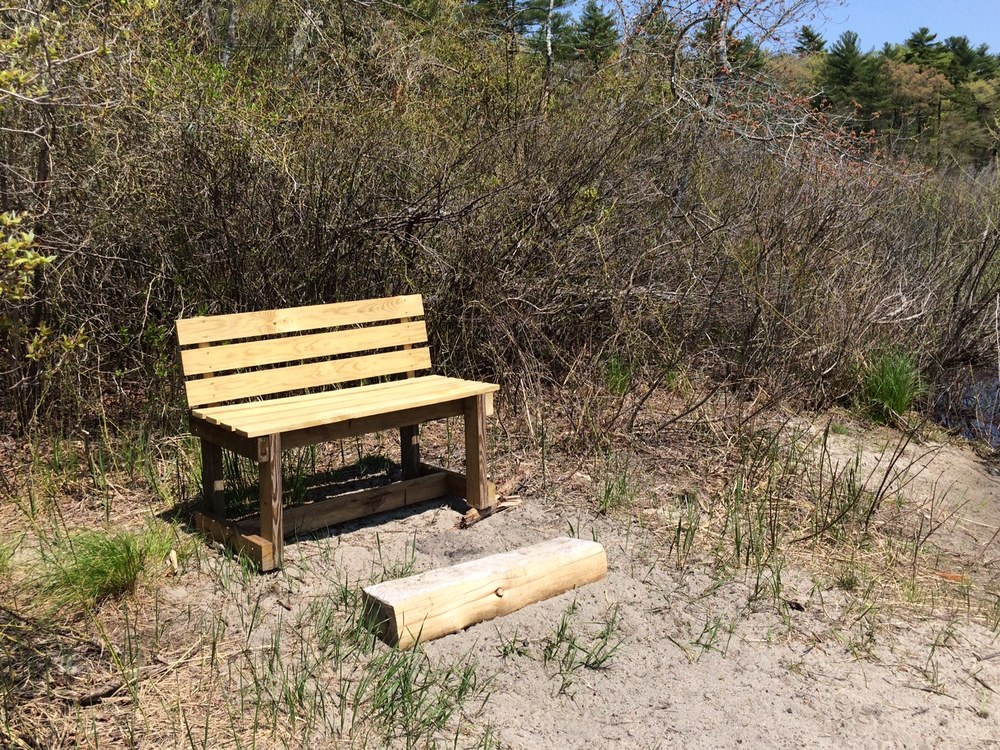 "My ""office."" A bench built by my 10 and 14 year old and placed so others can enjoy the spot."
