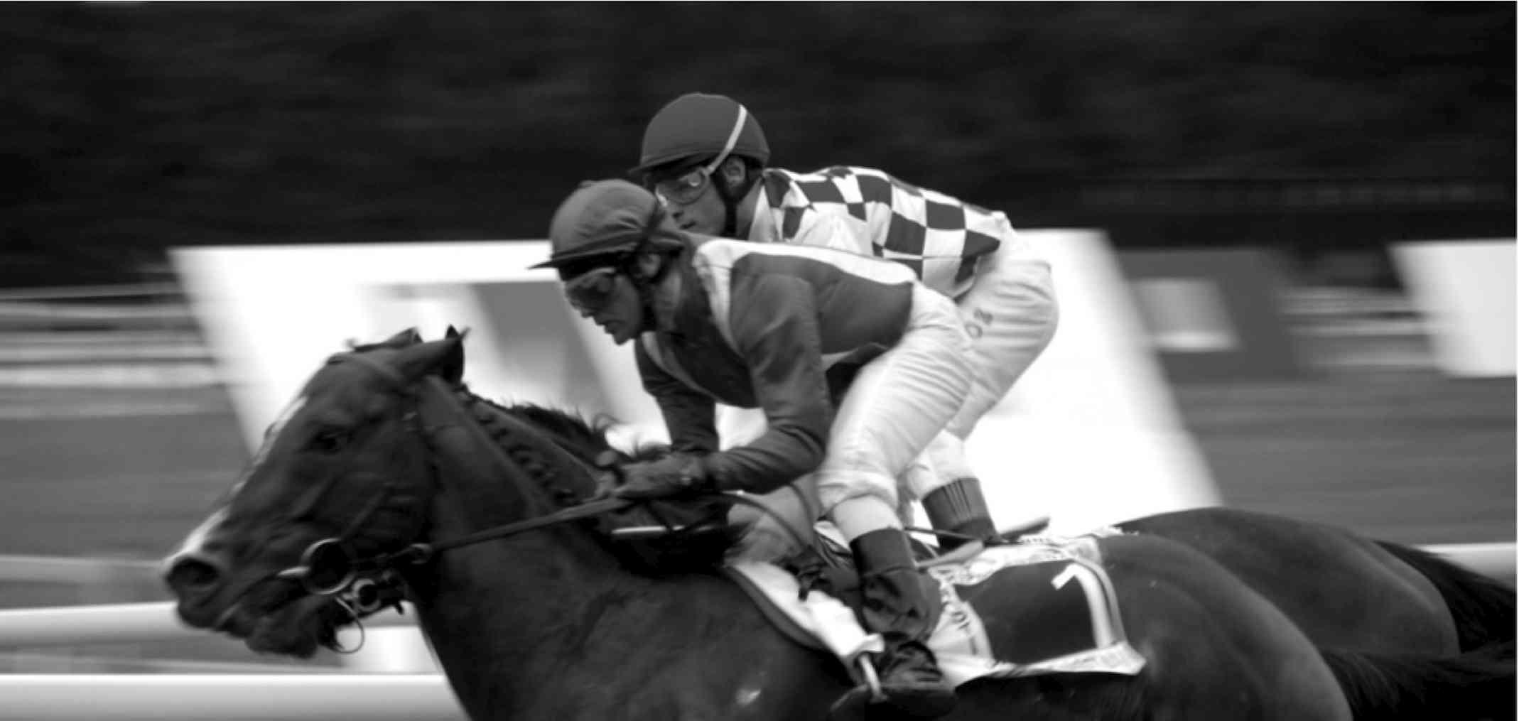horseraceXS