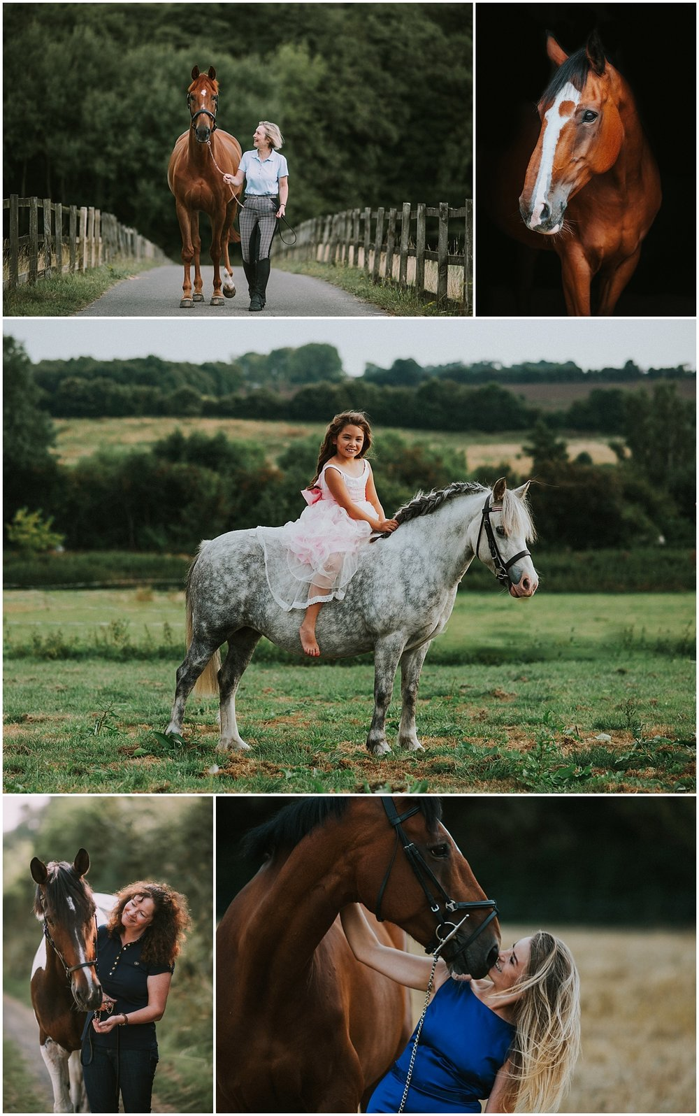 horse photographer in kent and surrey