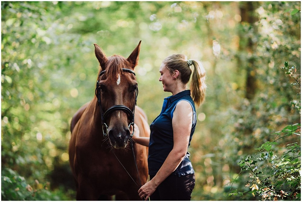equine photos