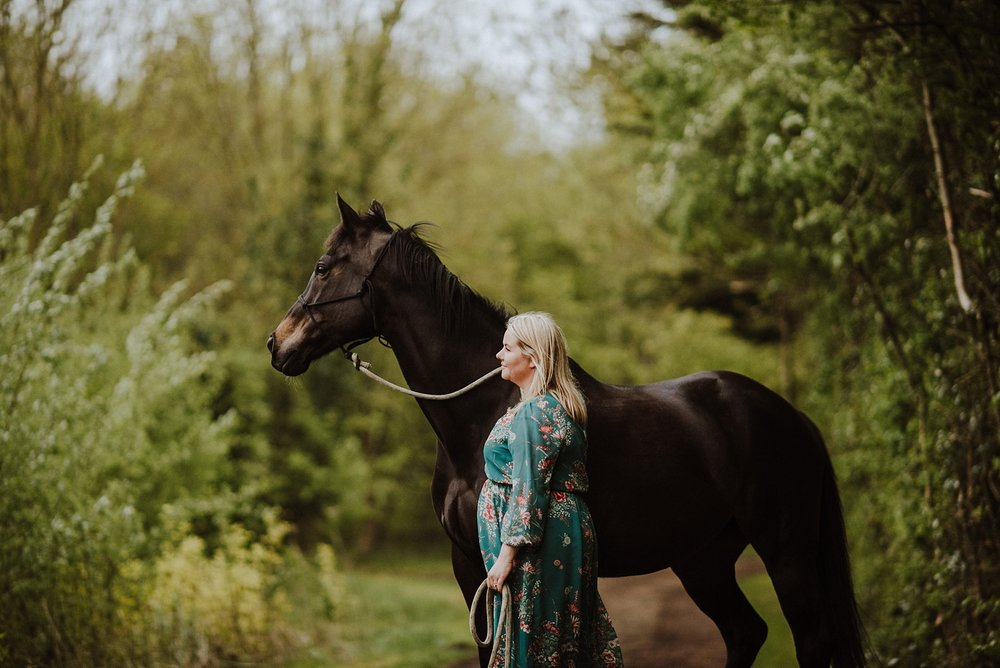 horse portrait photographer in kent