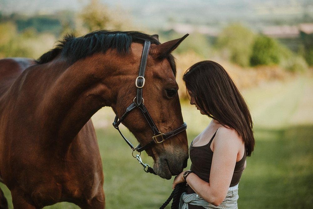 best uk horse photographer