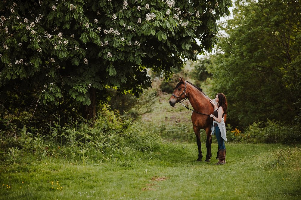 shropshire horse photographer