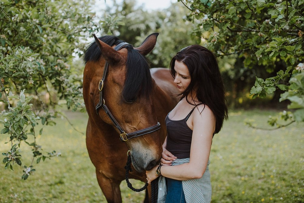 equine portrait photographer