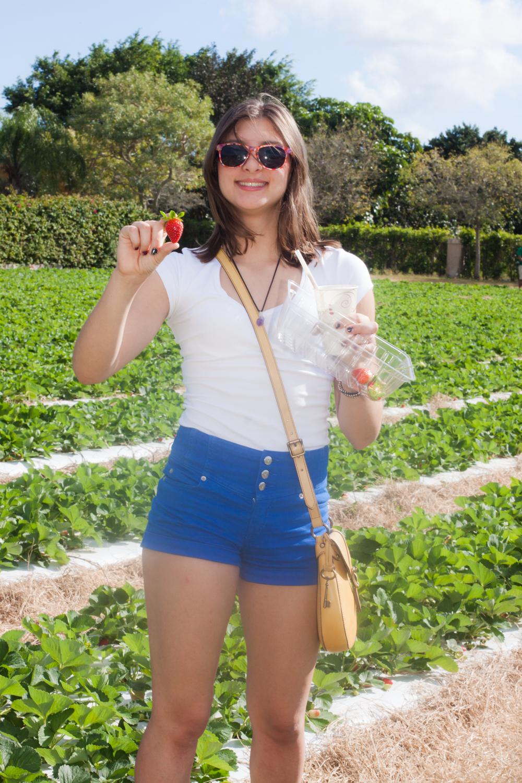 Strawberry Picking-9493.jpg