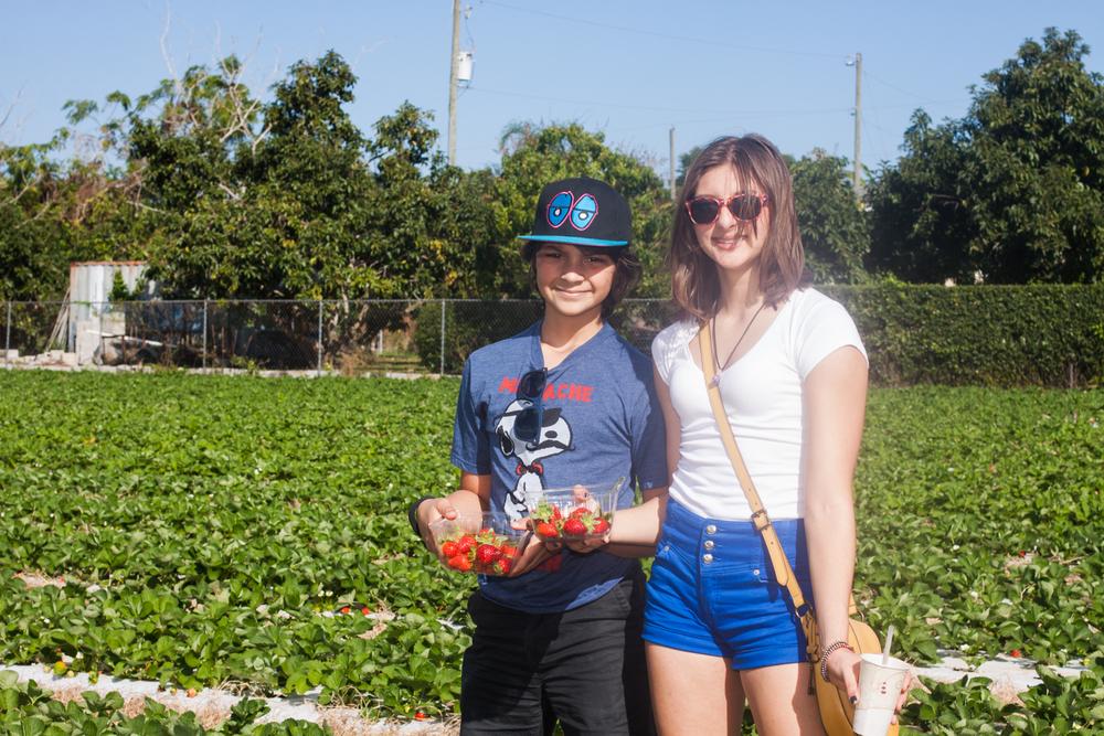 Strawberry Picking-9501.jpg