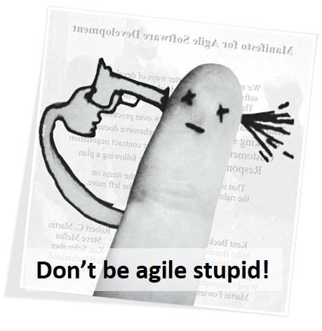 Agile stupid.jpg