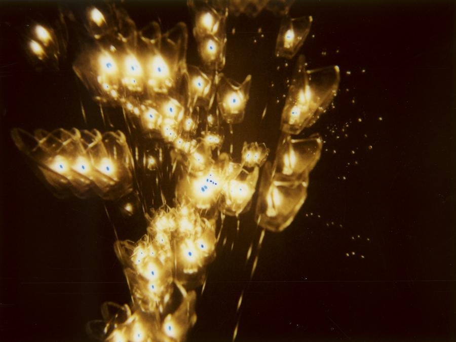 LIGHTS021.jpg