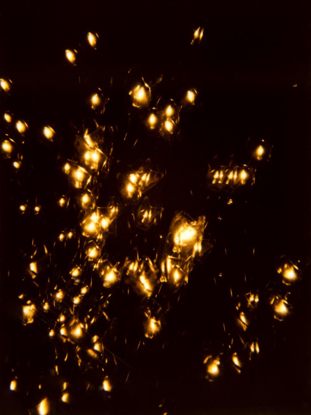 LIGHTS016.JPG