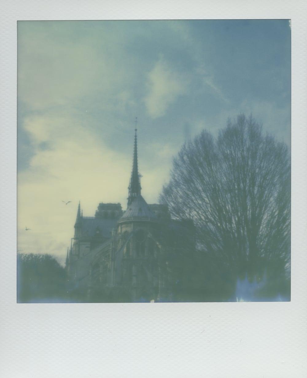 ParisPola2073.jpg