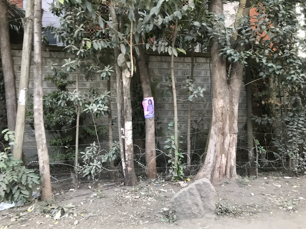 Posters even on tree trunks