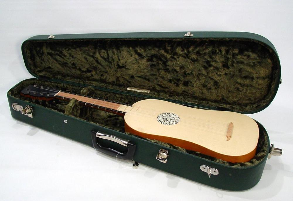 Instrument in the plush Kingham case