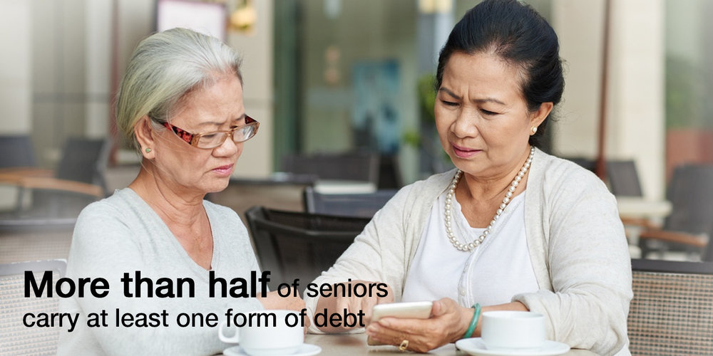 Senior Survey - Debt (web).jpg