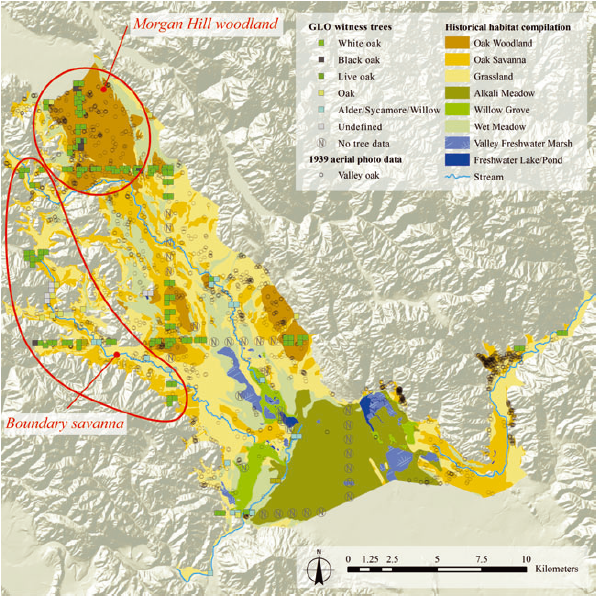 The south eastern portion of the Santa Clara Valley reconstructed by historical ecologists. The oak woodlands of Morgan Hill have been replaced with urban development; the southern alkali meadows no longer exist.  From:     Whipple AA, Grossinger RM, Davis FW (2011) Shifting baselines in a California oak savanna: nineteenth century data to inform restoration scenarios. Restoration Ecol 19: 88–101