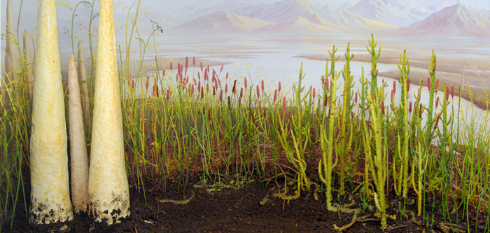 In the Silurian and early Devonian plants were, essentially, giant mosses that were confined to enormous wetlands.