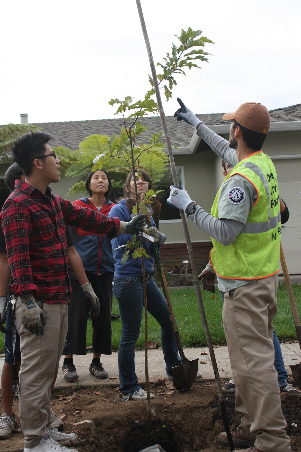 An Our City Forest AmeriCorps Service Member teaching the community how to properly plant a tree.