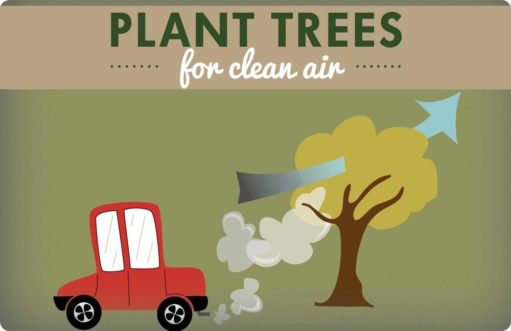clean-air (1).jpg