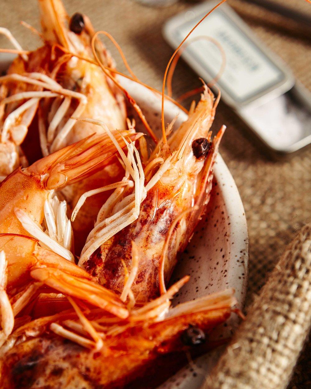 Shrimps_1.jpg