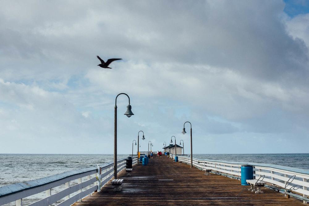 beach_nature_juliisolaphotography (8 of 20).jpg