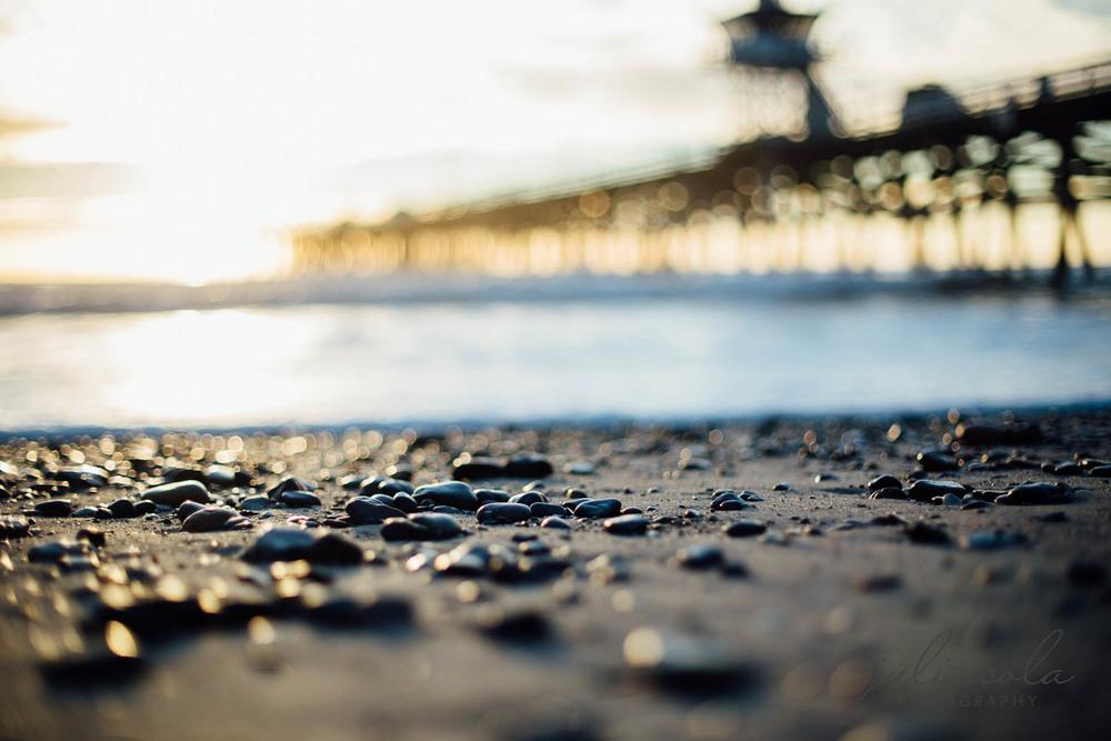 beach_nature_juliisolaphotography (12 of 20).jpg