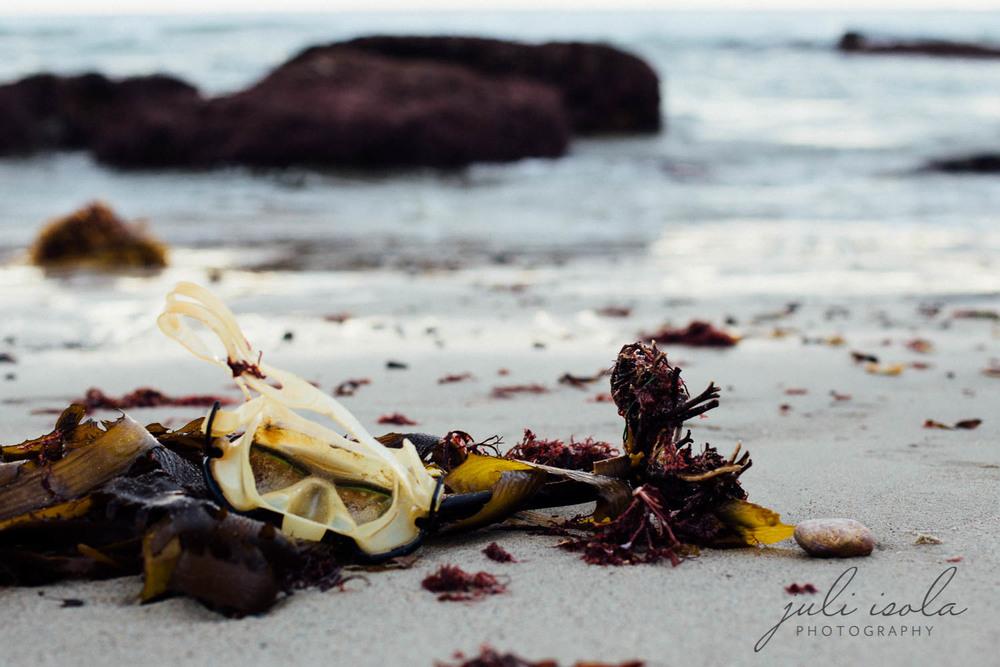 beach_nature_juliisolaphotography (15 of 20).jpg