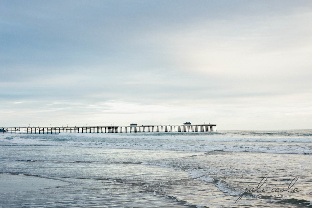 beach_nature_juliisolaphotography (18 of 20).jpg