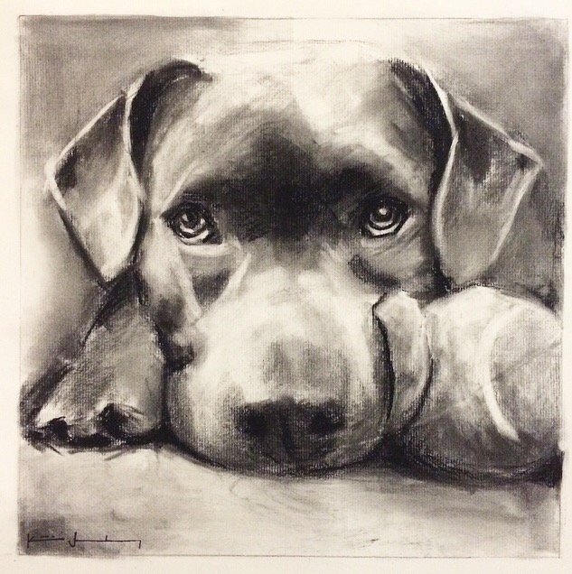 2015- LB Dog Portrait Drawing .jpg