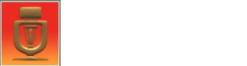 Walschon Fire Protection Inc