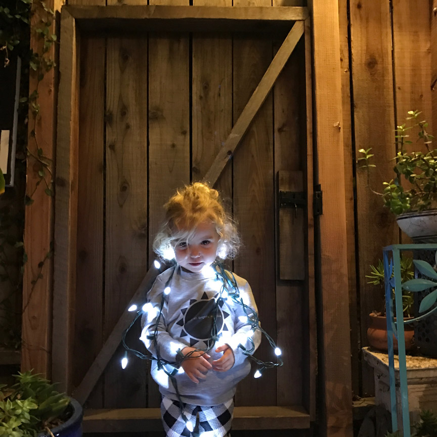 toddlerchristmaslights.jpg