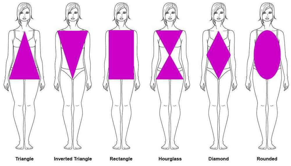 femalebodytypes.jpg
