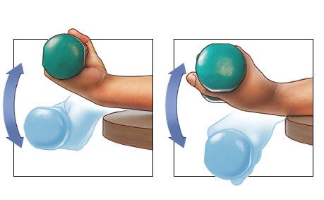 Dumbbell Wrist Flexion             Dumbbell Wrist Extension