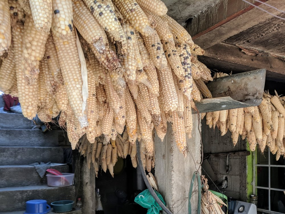 Corn hangs to dry at the Chulumal school.