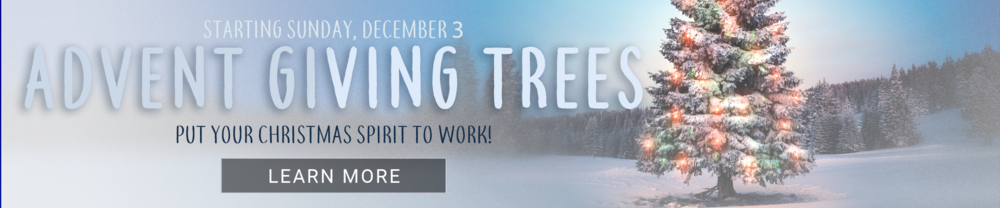 18Q3149-Advent_Giving_Header2425x504.png