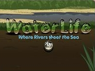Water Life: Rivers meet the Sea
