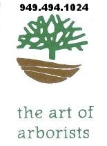 the art of arborists logo.JPG