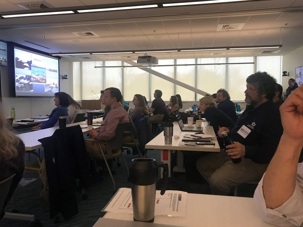 Northwest Atlantic Seal Research Consortium - meeting is a one-day conference to incorporate scientific and informal observation, presentation, panel discussion, open community forum and synthesis.
