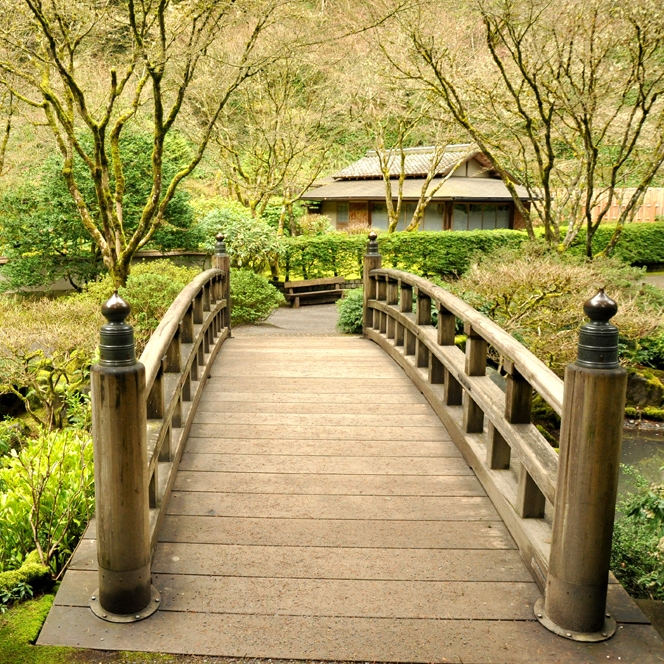 Japanese Gardens, Mar 2011
