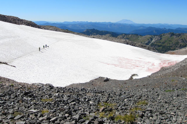 Crossing the Packwood Glacier