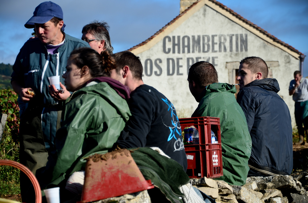 Hungry_Cyclist_Burgundy_Harvest12-112.jpg