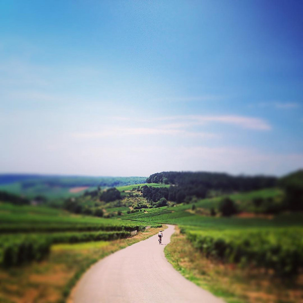 Relax at the end of a  perfect day cycling in burgundy