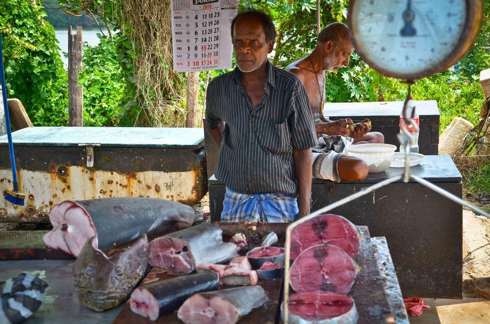 srilanka-26.jpg